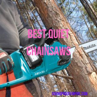 quietest chainsaw