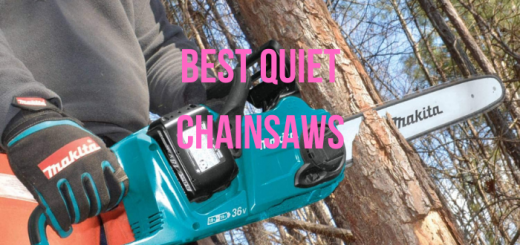 quietest chainsaw