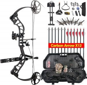 TOPOINT ARCHERY Daibow Momentous Compound Bow