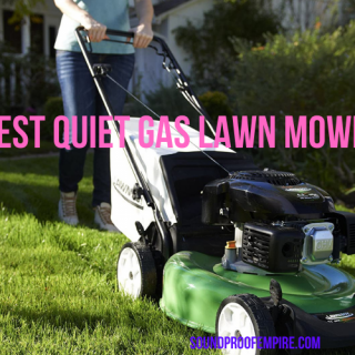 quietest gas lawn mowers