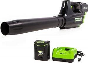 Greenworks Pro 500 CFM 80V Cordless Axial Leaf Blower