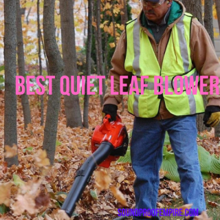 quietest leaf blower